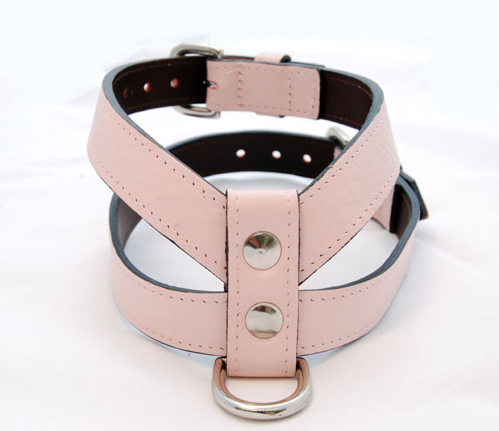 Pink-and-Brown-Harness